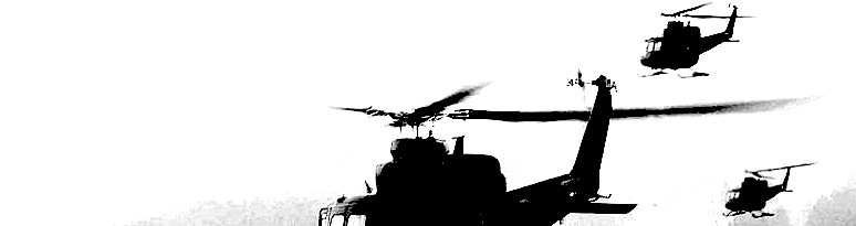 800px-Norwegian_military_Bell_412SP_helicopters